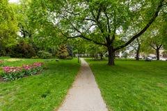 Parque de la academia al lado del edificio del capitolio en Albany, Nueva York fotos de archivo