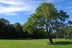 Parque de la ciudad Imagen de archivo libre de regalías