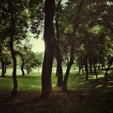 Parque de la ciudad Imagenes de archivo