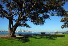 Parque de la ciudad Fotos de archivo libres de regalías