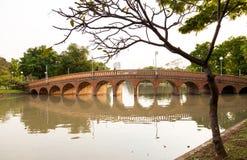 Parque de la ciudad, parque de Chatuchak del parque público Imagenes de archivo