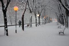 Parque de la ciudad de Skopje en la nieve Fotografía de archivo