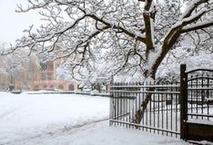 Parque de la ciudad del invierno Fotografía de archivo