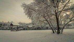 Parque de la ciudad del invierno Un claro con un árbol enorme y pabellones de madera se cubre con nieve imagenes de archivo