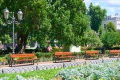 Parque de la ciudad del verano en el mediodía, el día soleado brillante, los árboles con las sombras y la hierba verde Imagenes de archivo
