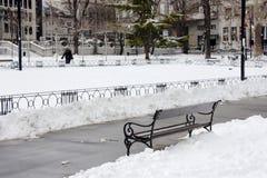 Parque de la ciudad en invierno foto de archivo
