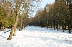 Parque de la ciudad en invierno fotos de archivo libres de regalías