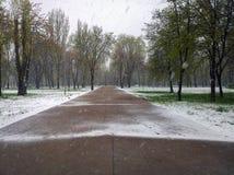 Parque de la ciudad en la nieve Foto de archivo libre de regalías