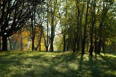 Parque de la ciudad en otoño Imágenes de archivo libres de regalías