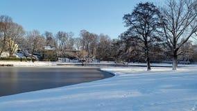 Parque de la ciudad Lago frío del paisaje del invierno Imagen de archivo libre de regalías