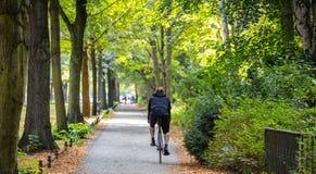 Parque de la ciudad de Tiergarten en Berlín, Alemania Opinión un hombre joven que monta una bici foto de archivo