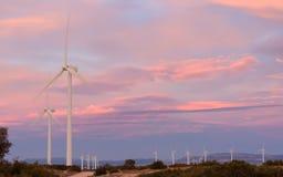 Parque de la energía eólica en la puesta del sol III Imagen de archivo