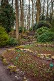 Parque de la flor de Keukenhof en Países Bajos Elementos del diseño del parque Fotografía de archivo libre de regalías