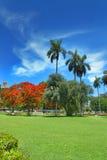 Parque DE La Fraternidad in Havana stock afbeelding