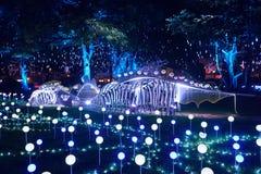 Parque de la iluminación Imagen de archivo libre de regalías