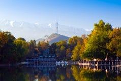 Parque de la mañana del otoño Foto de archivo libre de regalías
