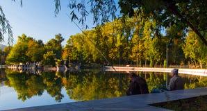 Parque de la mañana del otoño Imagen de archivo libre de regalías