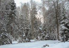 Parque de la nieve con los bancos nevados Foto de archivo