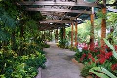 Parque de la orquídea Fotografía de archivo