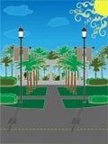 Parque de la palmera rodeado por l Imagen de archivo libre de regalías