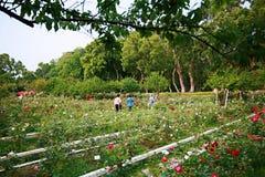 Parque de la residencia oficial de Shilin foto de archivo