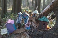 Parque de la secoya en Surrey del sur Imagen de archivo libre de regalías