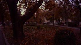 Parque de la tarde del otoño con los árboles en la ciudad turca de Konya almacen de video