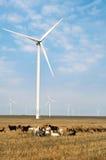 Parque de la turbina de viento en Rumania fotografía de archivo