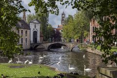 Parque de la Vina - Bruges nel Belgio Immagine Stock Libera da Diritti