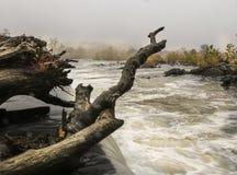 Parque de las grandes caídas Imagen de archivo libre de regalías