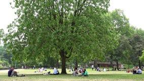 Parque de Londres James, turistas dos povos que relaxam o descanso na grama no piquenique vídeos de arquivo