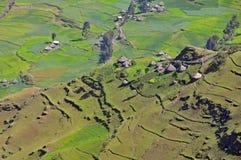 Parque de los mointains de Simien Imágenes de archivo libres de regalías