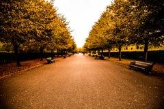Parque de los regentes Imagen de archivo libre de regalías