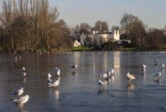 Parque de los regentes en Londres Foto de archivo