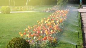 Parque de lujo del jardín elegante con el sistema automático de la irrigación de regadera imágenes de archivo libres de regalías