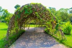 Parque de Lumpini que ajardina en Bangkok, Tailandia fotos de archivo libres de regalías