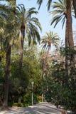 Parque de Malaga (Parque de la Alameda) Stock Images