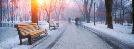 Parque de Mariiinsky fotografia de stock royalty free