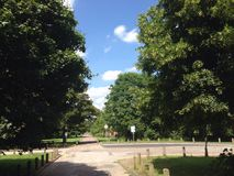 Parque de Markeaton do dia de verão Fotografia de Stock Royalty Free