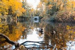 Parque de Marlay - Dublín fotos de archivo
