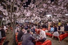 Parque de Maruyama Imagen de archivo