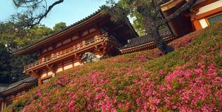 Parque de Maruyama em Gion - Japão fotografia de stock