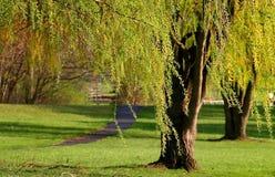 Parque de Michigan durante o tempo de mola imagens de stock royalty free