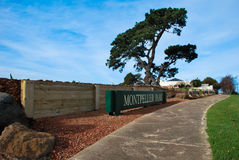 Parque de Montpellier, Geelong, Victoria, Austrália Imagem de Stock Royalty Free