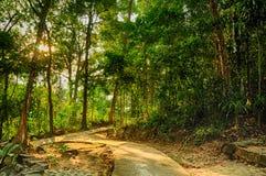 Parque de Namtok Phliu Foto de archivo libre de regalías