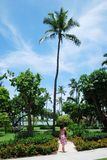 Parque de Nassau Fotografia de Stock