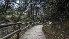 Parque de naturaleza Imagenes de archivo