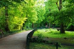 Parque de naturaleza Fotografía de archivo