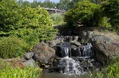 Parque de naturaleza con la cascada Foto de archivo libre de regalías