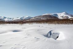 Parque de naturaleza de Nalychevo, Spring Valley caliente Fotos de archivo libres de regalías